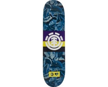 GRIFFIN X ELEMENT Skateboard Decks
